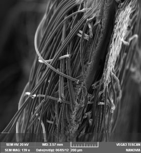 Fig. 1 - laminate Nanovia Anti Virus