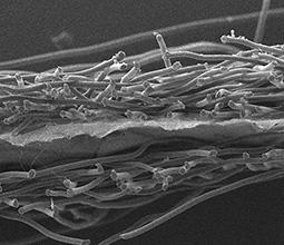 Obr. 1 – Laminát Nanovia AntiAllergy NW 70